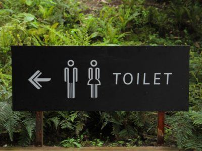 Earthquakes on the Toilet and Other Lessons in Normality
