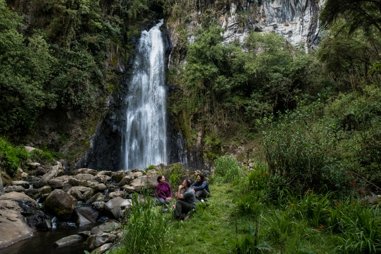 Waterfall near Murillo, Parque Nacional Los Nevados