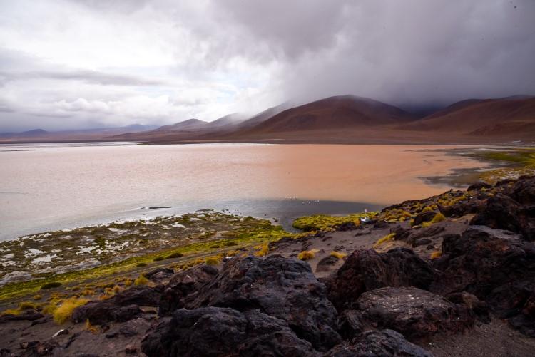 The pink Laguna Colorada; one of the highlights of Salar de Uyuni tours.