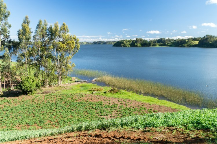 Lago Budi, an unmissable indigenous tourism attraction in Chile's Araucania region