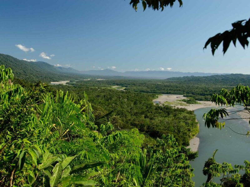 Manu National Park, one of the best places to visit in Peru for wildlife watching