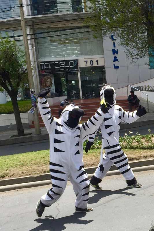 Zebra crossing guards in La Paz, Bolivia