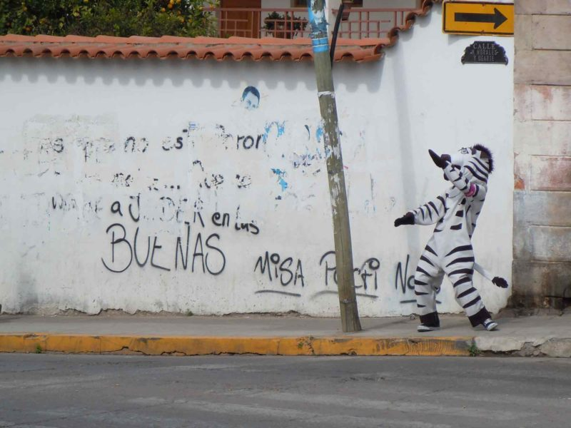 A dancing Zebra in the city of Sucre helps keep people safe when crossing the street. Check them out on this South America Backpacking Route