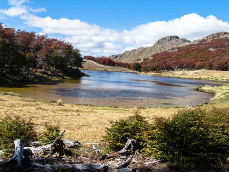 A lake on the Lagunas Altas hiking trails in Patagonia National Park in Chilean Patagonia