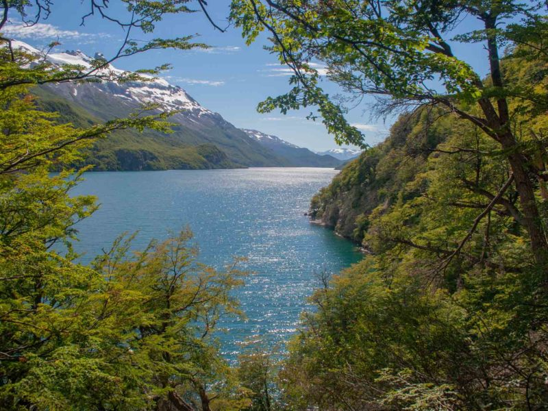 Lago O'Higgins at the end of the crossing from El Chalten, a trekking adventure in Patagonia